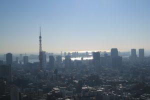 東京タワーと東京湾が見える朝の景色