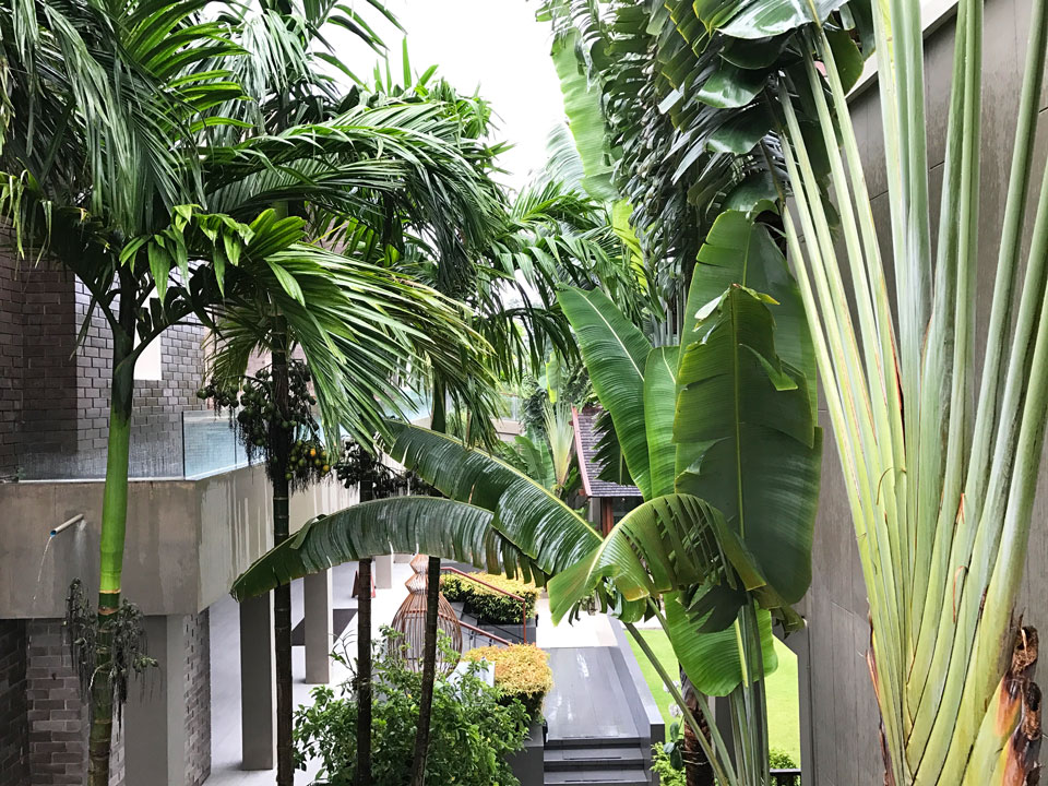 Avista Hideaway Resort & Spa Phuket