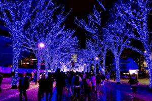 青の洞窟 SHIBUYA・代々木公園ケヤキ並木 (C)SHUN69