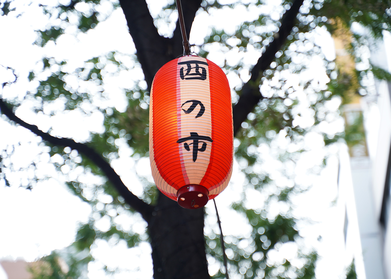 酉の市の提灯(2019年11月2日)(C)SHUN ONLINE