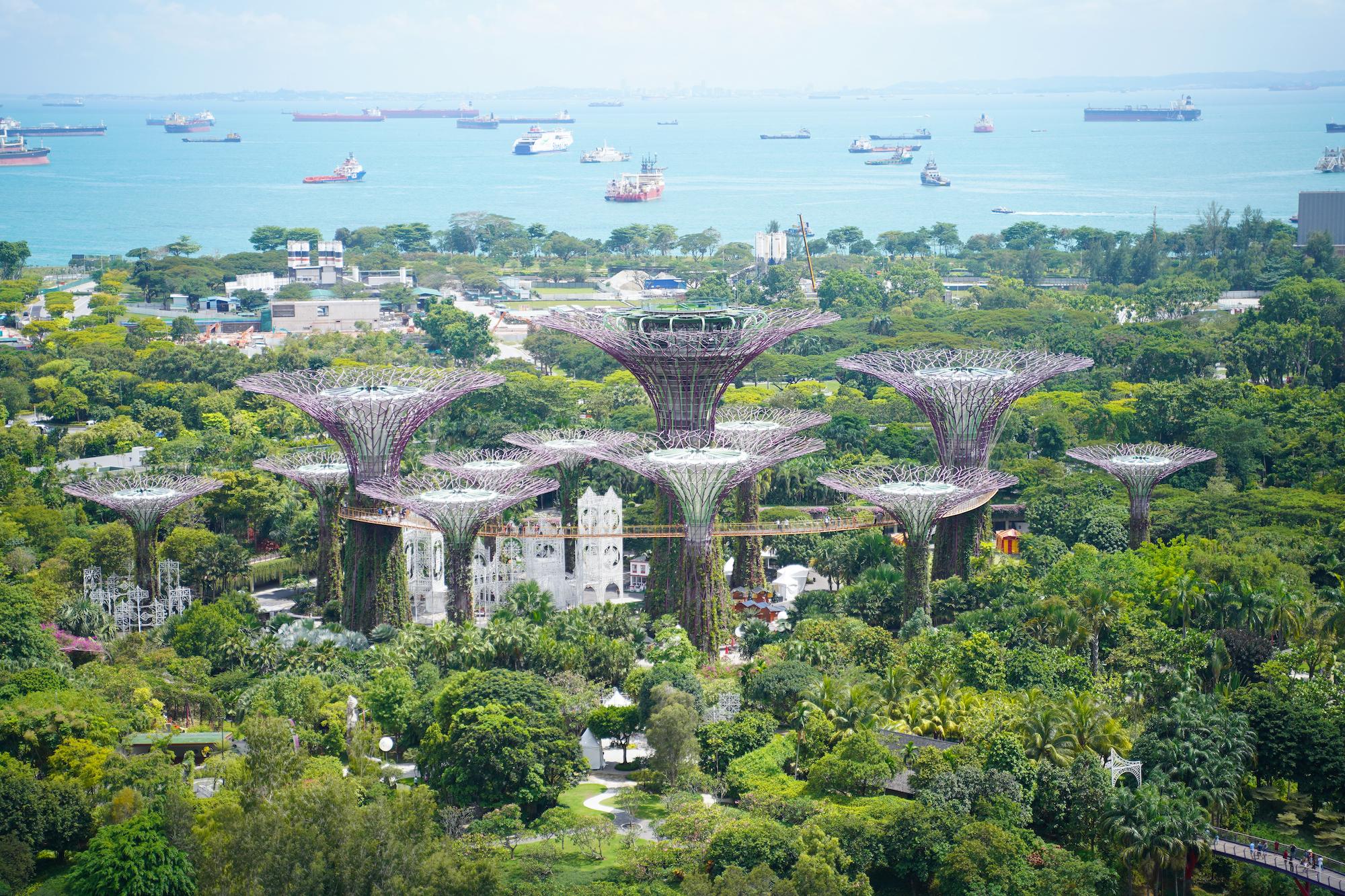 シンガポールのホテル「マリーナベイ・サンズ」の部屋から眺めた光景(植物園)/2019年11月30日:撮影:SHUN ONLINE