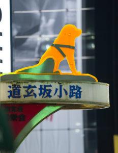 道玄坂小路の犬 in 渋谷 2020年6月2日