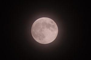 Strawberry Moon(ストロベリームーン)2020年6月5日/撮影:SHUN