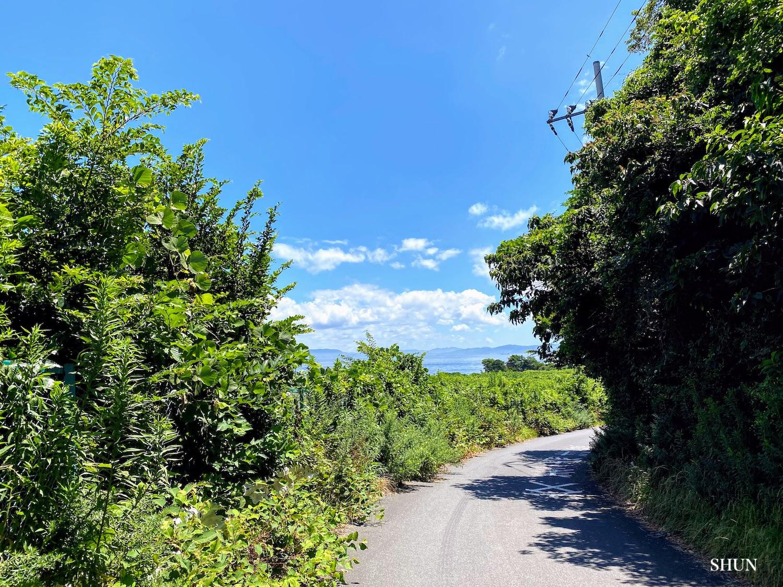 燈明堂海岸へと向かう小道(2021.07.17) PHOTO: SHUN